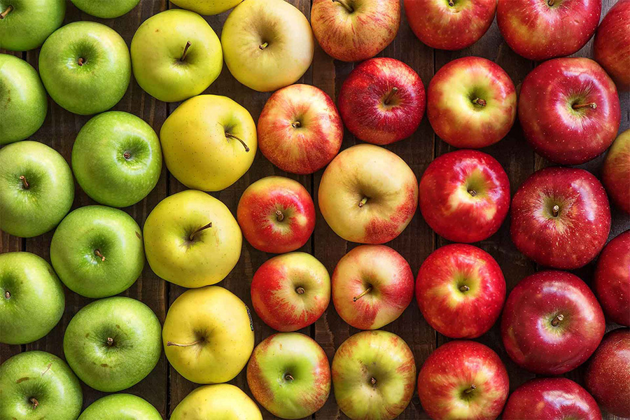 Comparing Apples To Apples When Choosing a Radon Contractor