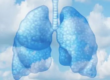 Possible Sources of Indoor Air Pollution