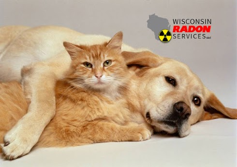 Radon gas & pets - Make sure your furry friends and protected from radon